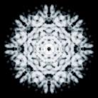 Light Flake