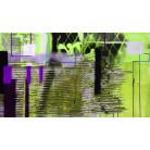 Rhombus Hiding green-violett