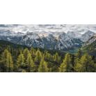 Wild Dolomites